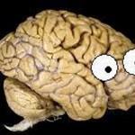 neuro_skeptic