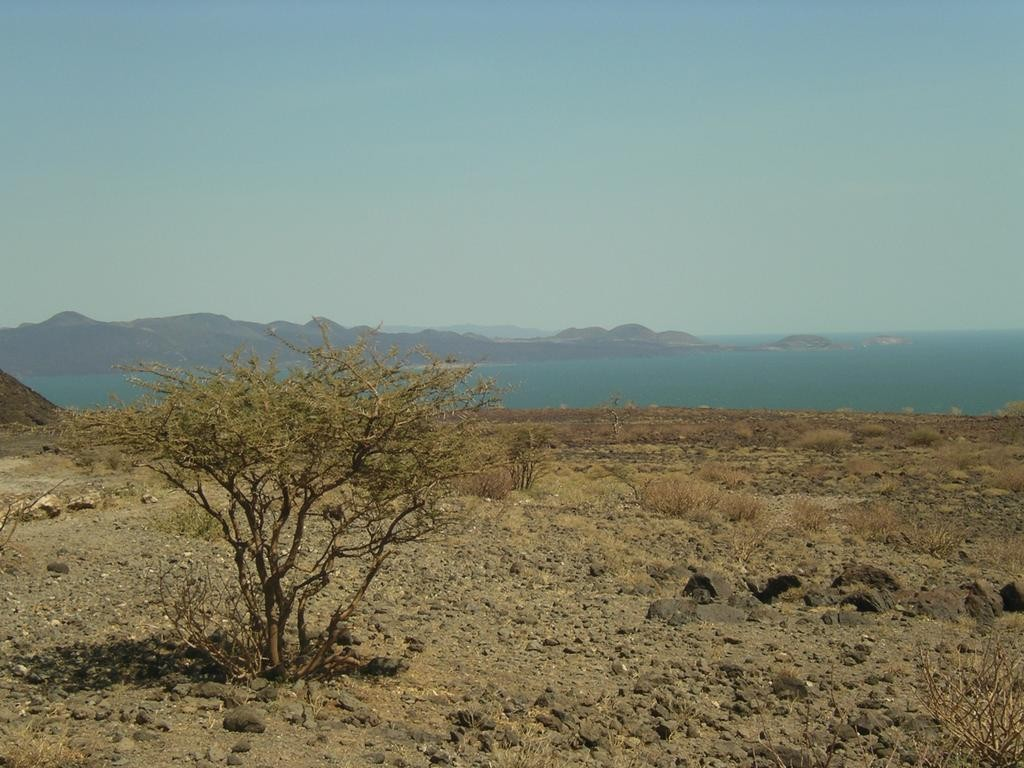 Lake Turkana. Image credit: AdamPG, Wikipedia.