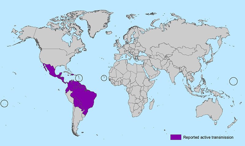 All Countries and Territories with Active Zika Virus Transmission. Image: CDC
